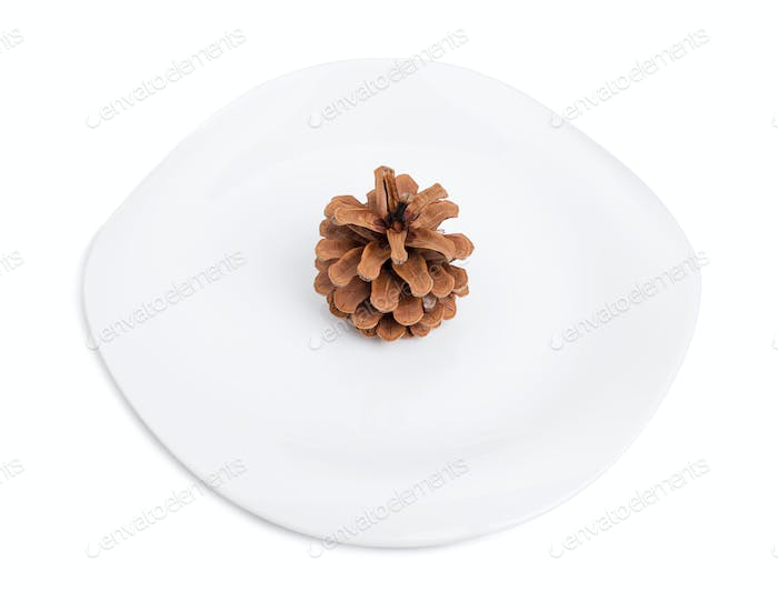 One pine cone on a white plate.