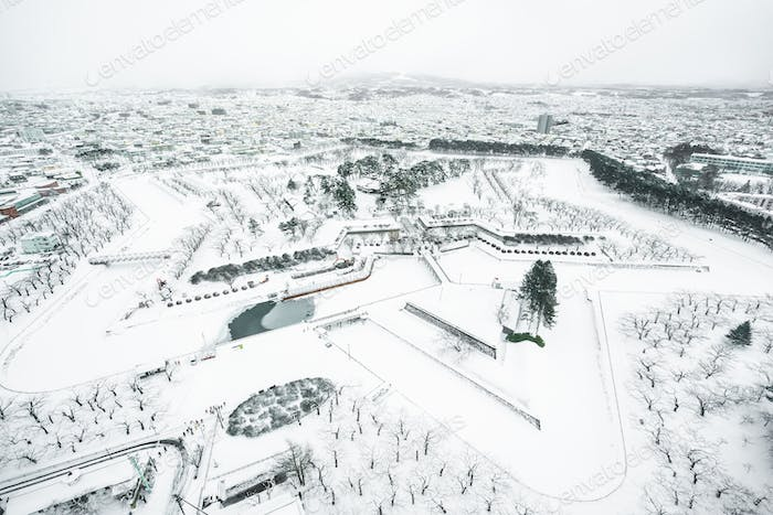 Beautiful landscape and cityscape from Fort Goryokaku tower in H
