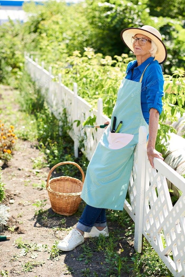 Happy Senior Gardener Posing by Plantation