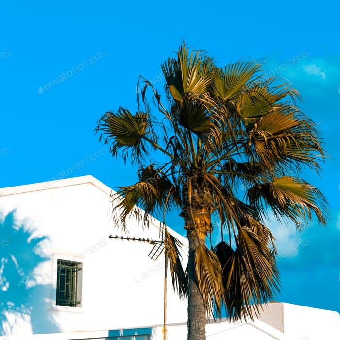 Tropical island location. Palms and hotel. Minimal art