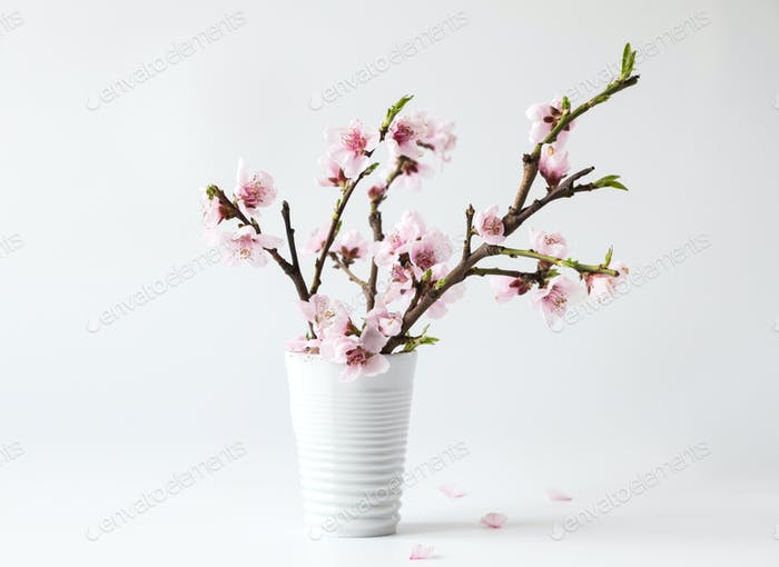 Flowers composition spring. Blank photo frame for text and peach blossom