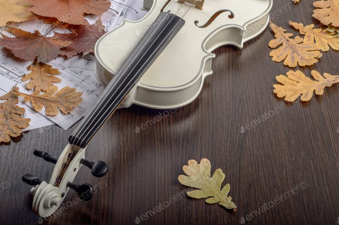 Close view of a white violin dry oak leaves and musical notes on