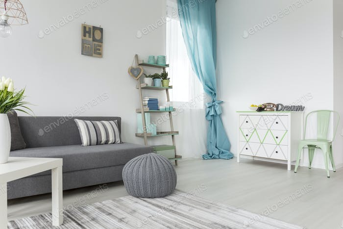 Living room in  gray and pastel colors