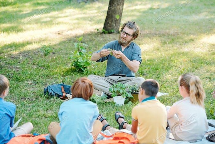 Den Schülern den Photosynthese-Prozess erklären