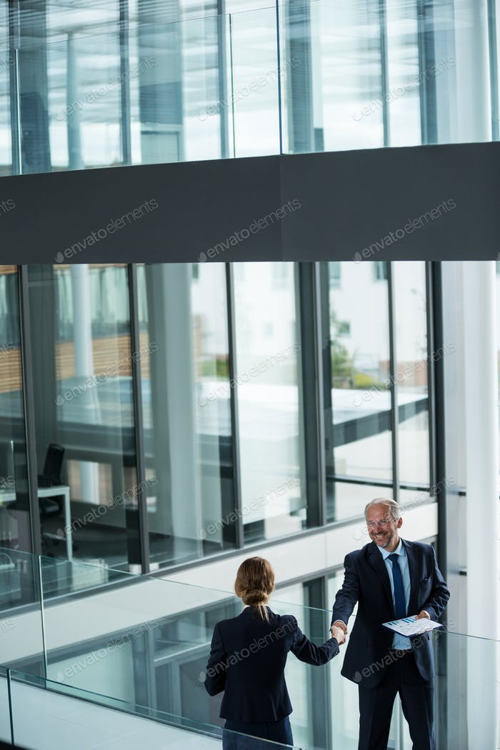Businessman shaking hands with his colleague