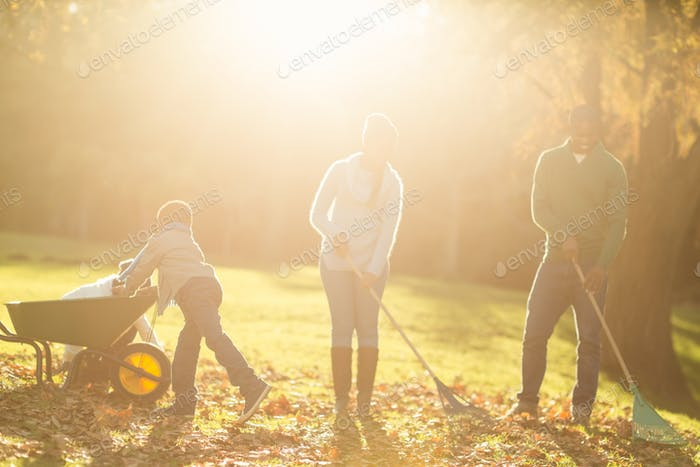 Young family picking up leaves on an autumns day