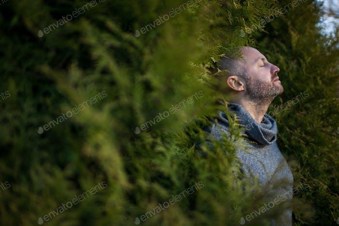 Atmen Sie frische Luft in der Natur.