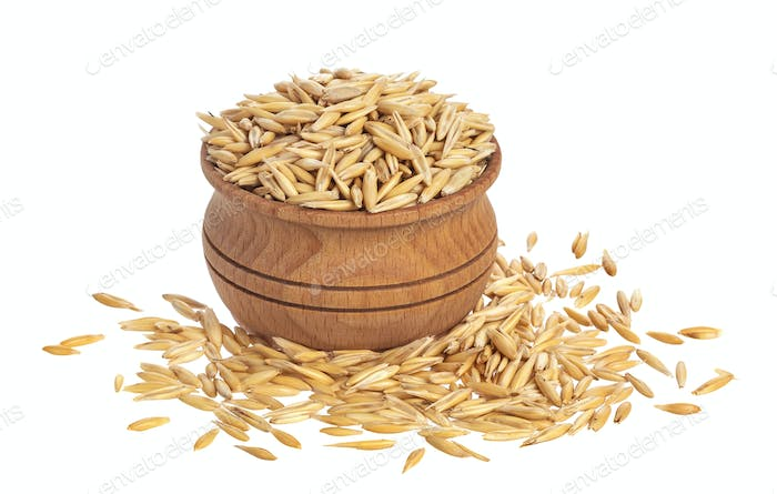 Bowl of oat seeds isolated on white background