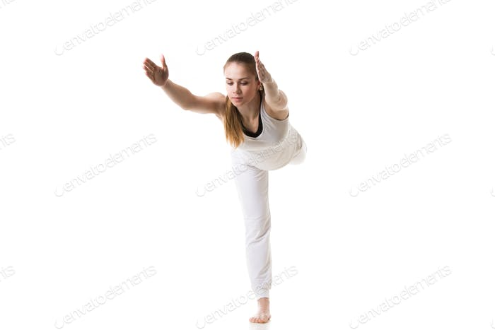 Yoga Pose Krieger 3