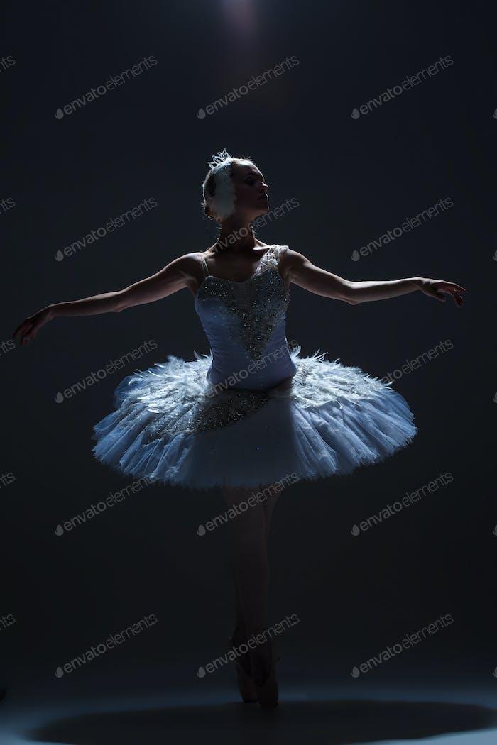 Portrait of the ballerina in ballet tatu on dack background