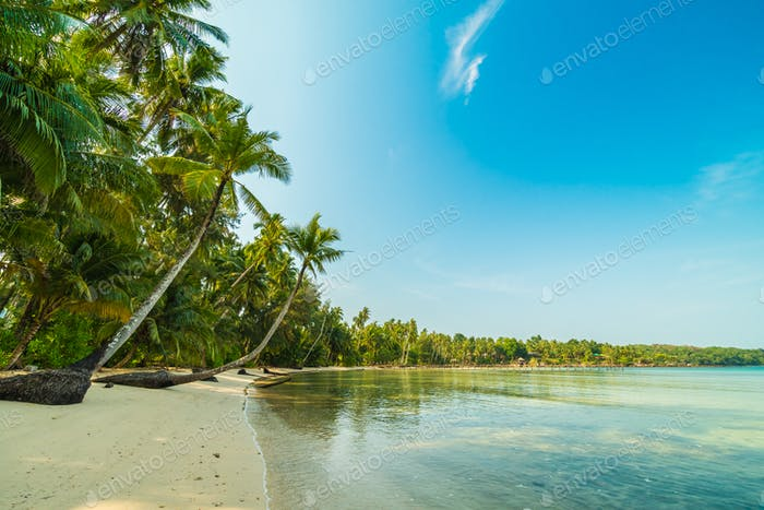 Beautiful paradise island with beach and sea