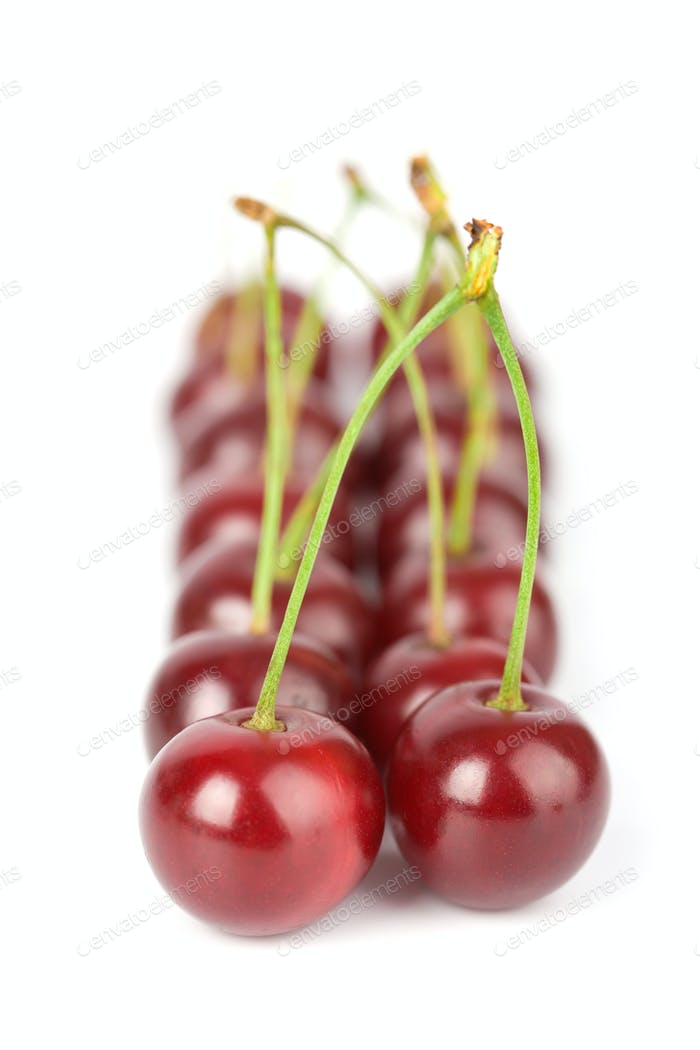 ripe cherries isolated