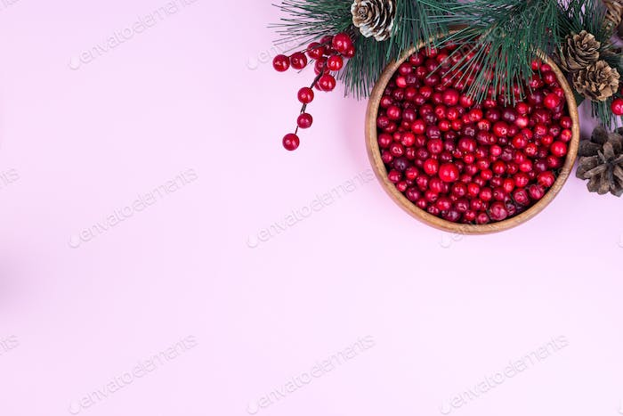 Pine branch with cones and bowl of fresh cranberry