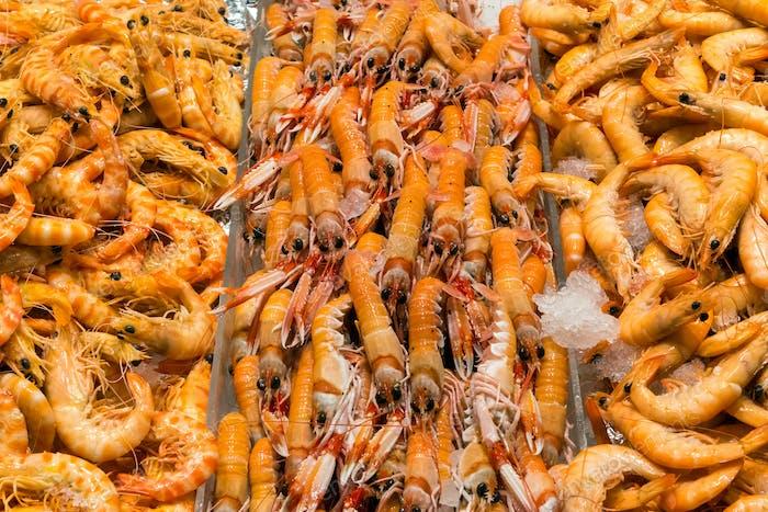Fresh shrimps for sale a market