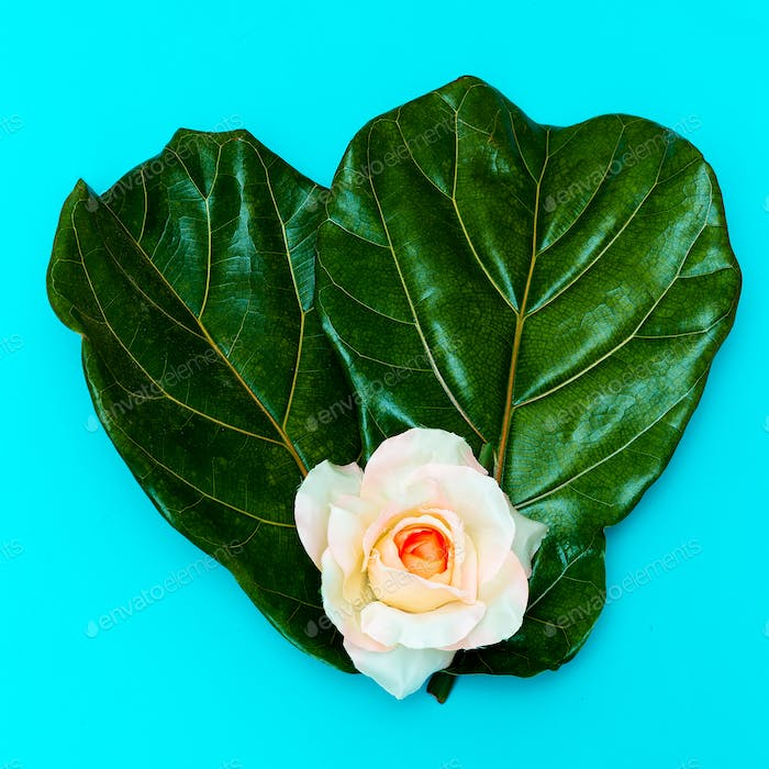 Green leaf and Rose  Minimal art design. Flat lay