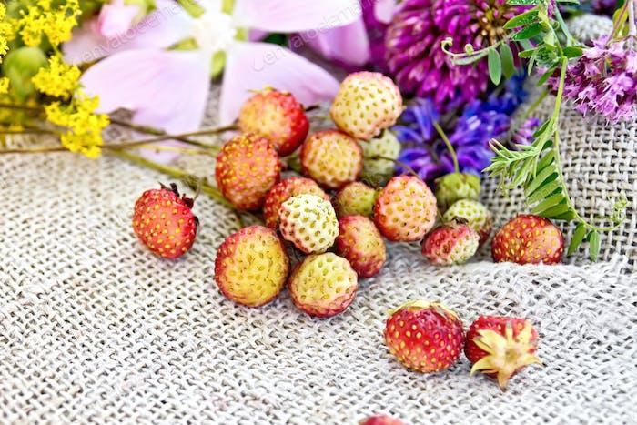 Erdbeeren mit Blumen auf alten Sackleinen