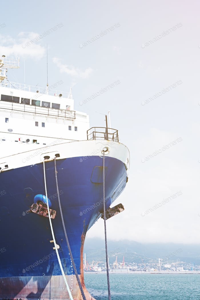 Nose is moored cargo ship.