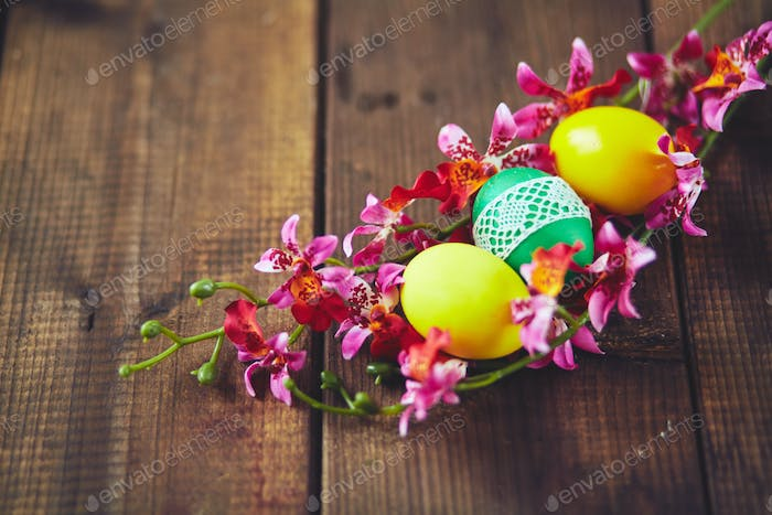 Eggs in orchids