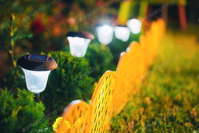 Small Solar Garden Light, Lantern In Flower Bed. Garden Design.