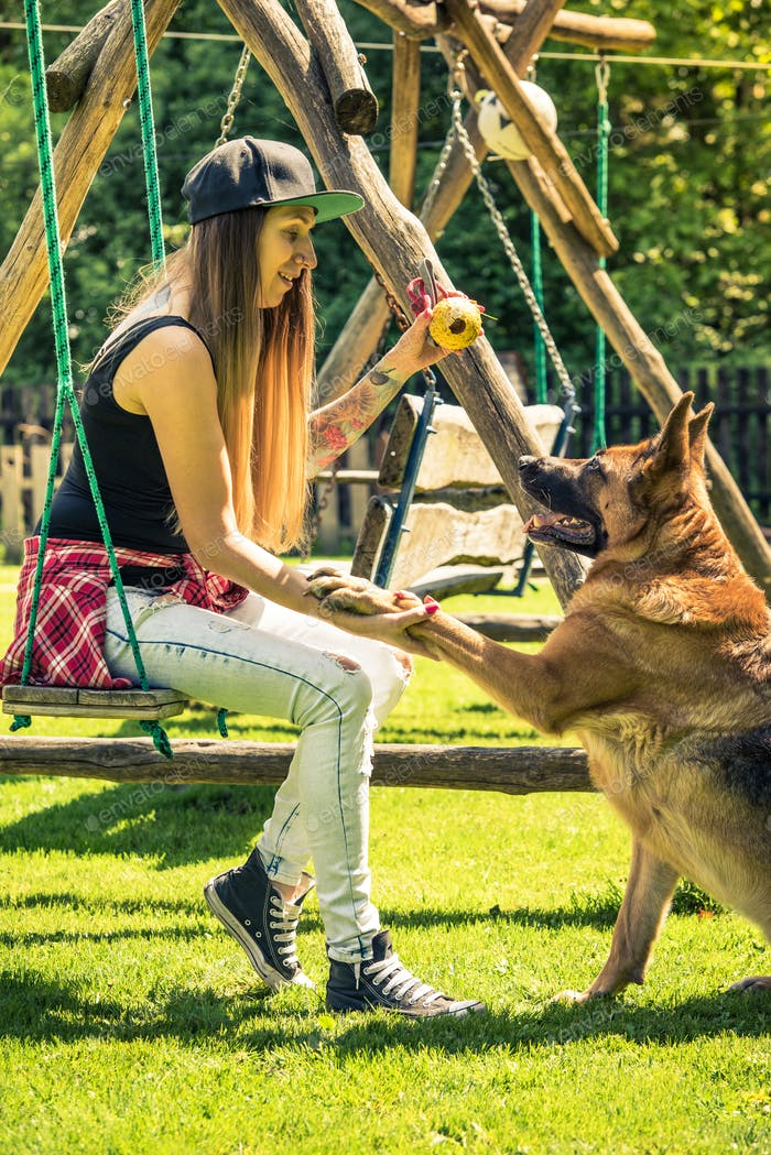 Playfull dog at summer in garden with owner