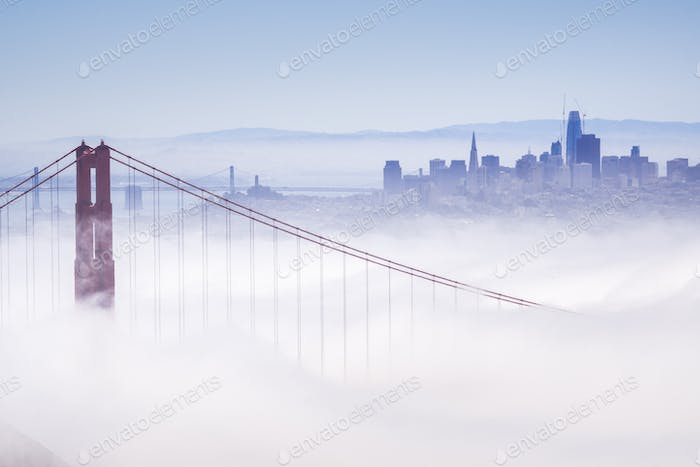 Golden Gate and the San Francisco bay covered by fog