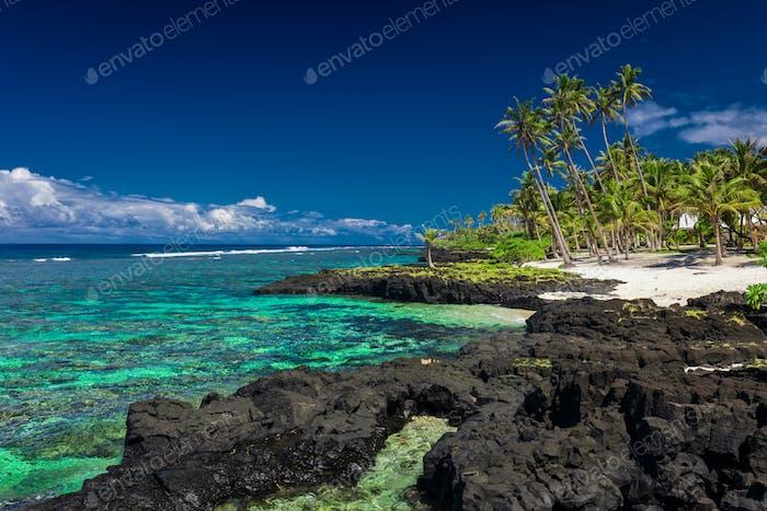 Coral reef on Upolu, Samoa Islands.