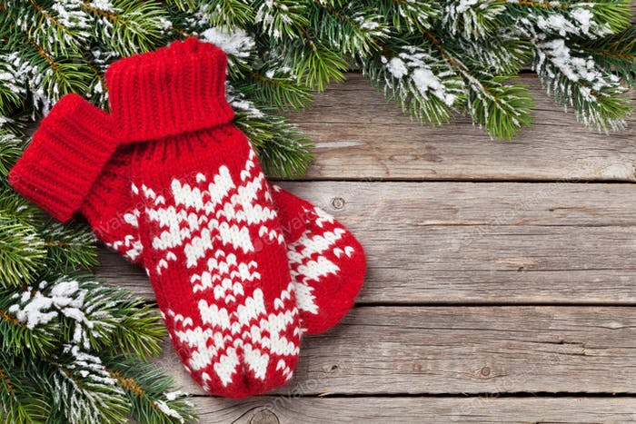Christmas background with fir tree and mittens