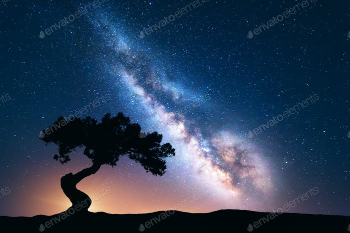 Milky Way with alone old crooked tree on the hill