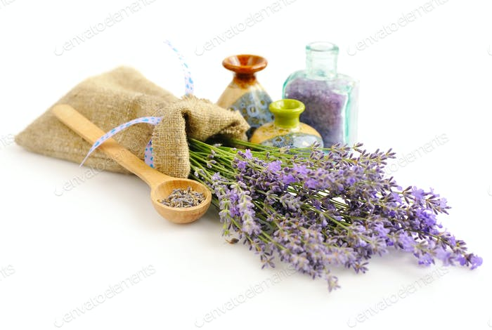 Lavender fresh and dry flowers on white background