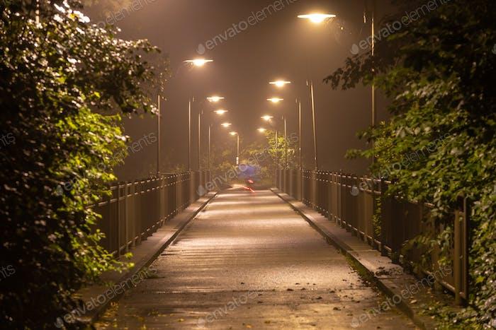 Moody Night Bridge