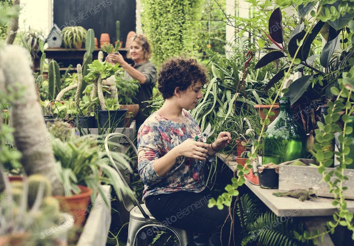 Women working in a garden shop