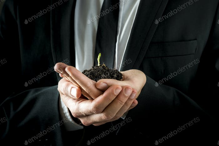Businessman Hands Holding Soil with Young Sprout