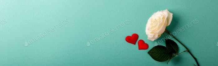 Weiße Rose. Valentinstag, Geburtstag, Grußkarte, Geschenk.