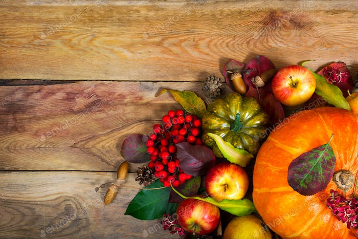 Thanksgiving background with orange pumpkin, green squash, copy