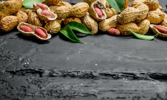 Erdnüsse mit grünen Blättern.