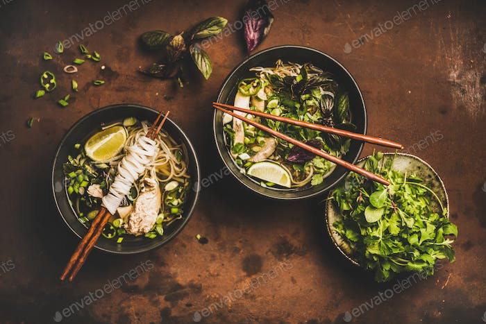 Vietnamese asian traditional rice noodle and chicken soup Pho Ga