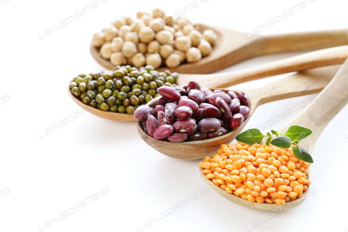 Various Kinds of Legumes