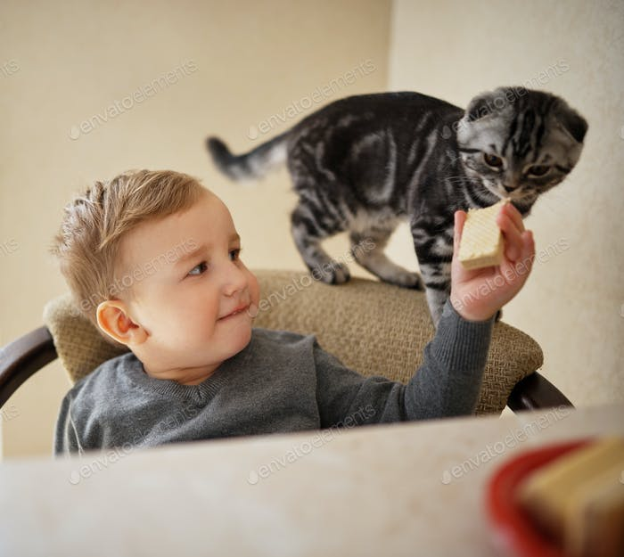 little boy shares food with cat
