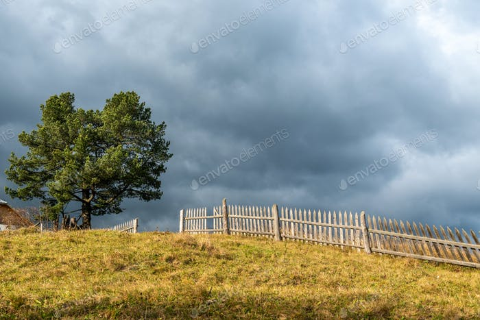 Landscape with lonely tree and dark stormy sky