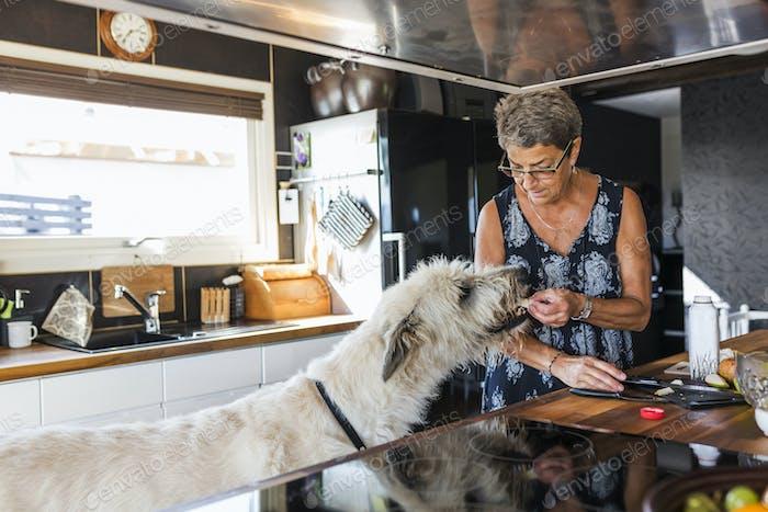 Woman feeding Irish Wolfhound in kitchen