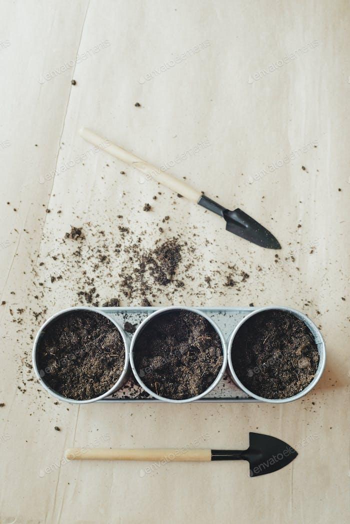 Pflanzung von Samen in Metalltöpfen