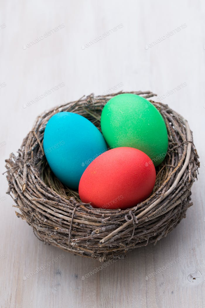 Easter eggs in the nest. Spring discount card.