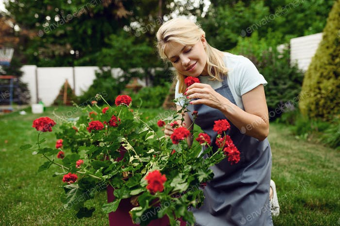 Woman in apron smelling flowers in the garden