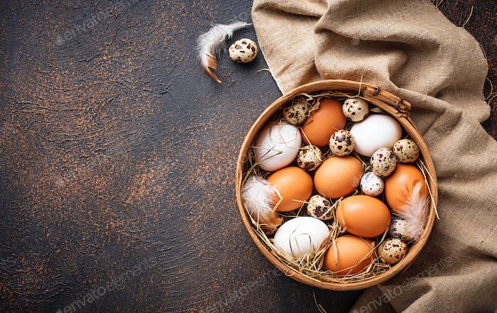 Fresh raw chicken and quail eggs in sieve