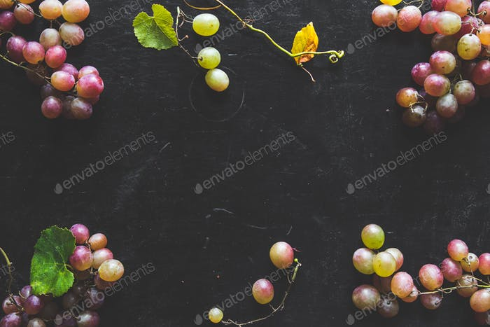 Dark Food - Fresh unpolished dark red black grapes on black slate stone background