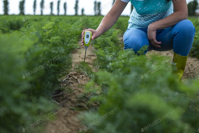 Measure soil with digital device. Green plants and woman farmer