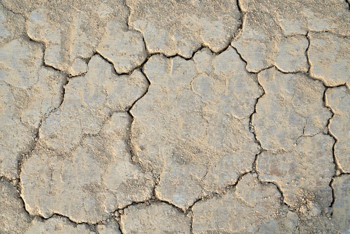 Cracked soil in summer