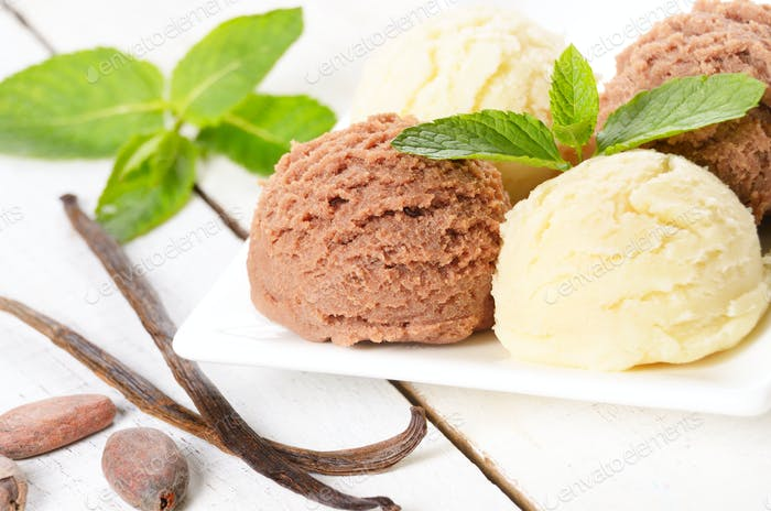 Cocoa and vanilla ice cream scoop