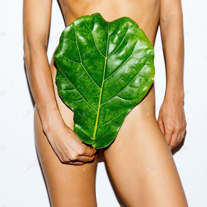 Tropical Leaf and Body. Bio concept. Modern art