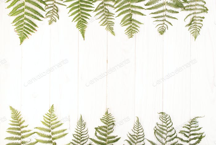 Banner of Flat lay composition of green fern leaves on white wooden table